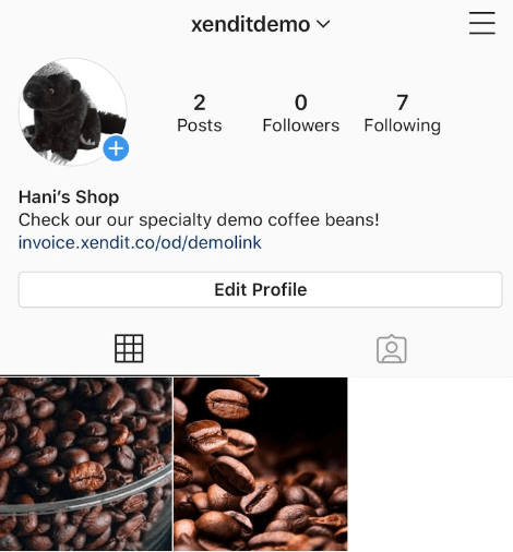 Sample instagram payment link